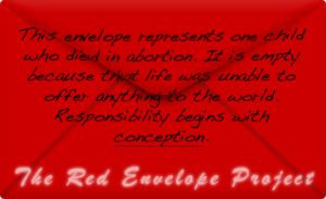 Red Envelope Project